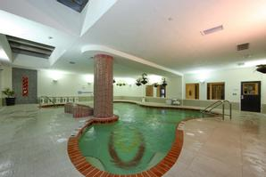 The Holiday Inn Sarasota - Airport | Sarasota | Photo Gallery - 43